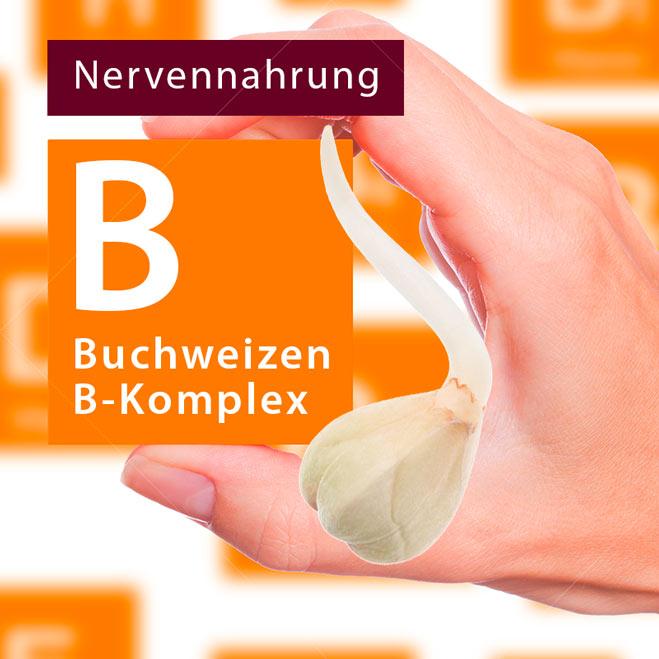 montage_vitamin-B_quadratisch.jpg
