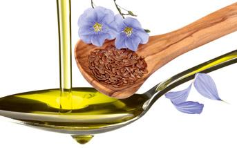 Fotomontage: Frisch gepresstes Leinöl auf einem Löffel präsentiert, daneben Leinsamen und eine Leinenblüte.