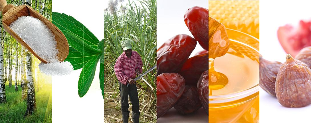 Collage mit Birkenzucker, Feigen, Honigwabe, Zuckerrohrplantage und Stevia.