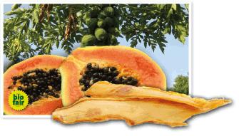trockenfruechte_papaya.png