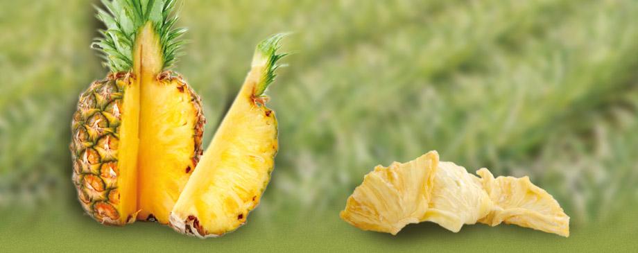 header_ananas.jpg