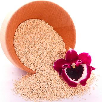 Keimfähiges Quinoa zum Kochen verziert mit einer Lila Orchideenblüte.
