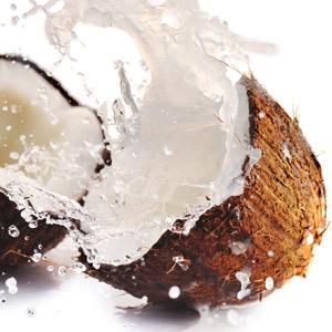 Kokosnuss mit Kokosmilch