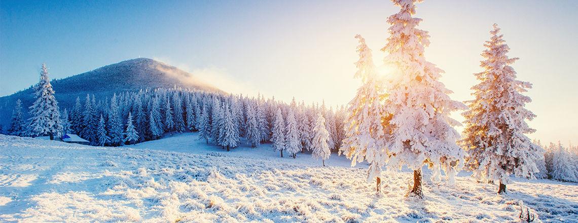 slider_Winterlandschaft.jpg